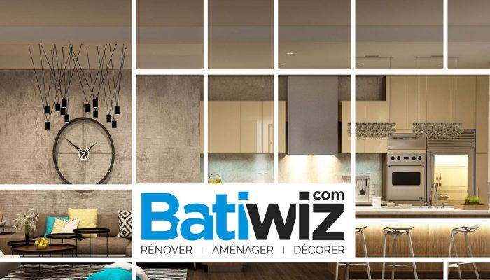 batiwiz ventes priv es bricolage jardinage et b timent agenda priv. Black Bedroom Furniture Sets. Home Design Ideas