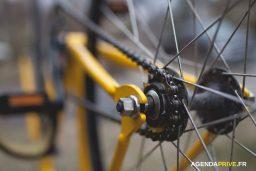 Vélo Deal : Tout L'univers Du Vélo à Prix Négocié